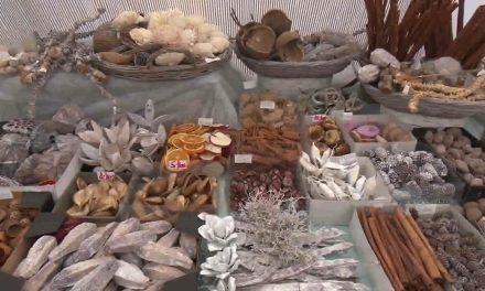 Zahradnictví v Kostelci na Hané pořádá výstavu Dotek vánoc