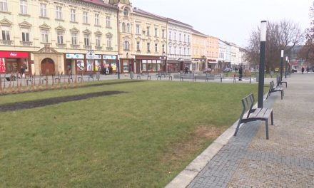 Na centrálním náměstí vyroste nová alej