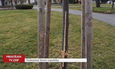 Neznámý pachatel poškodil Strom republiky