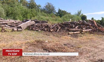 Lidé si mohou koupit palivové dřevo přímo od města
