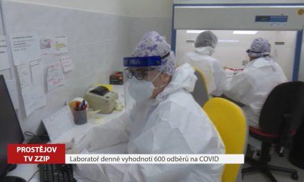Laboratoř denně vyhodnotí 600 vzorků na covid-19
