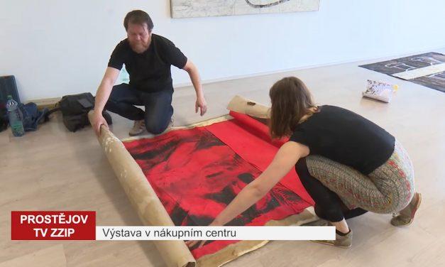 Dvojice umělců vystavuje v nákupním centru