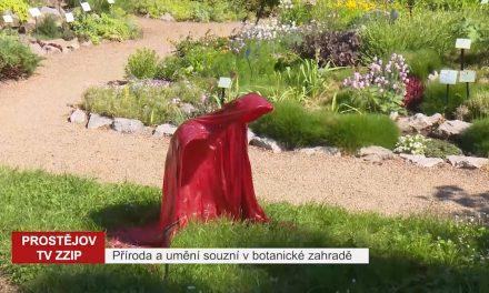 Příroda a umění souzní v botanické zahradě