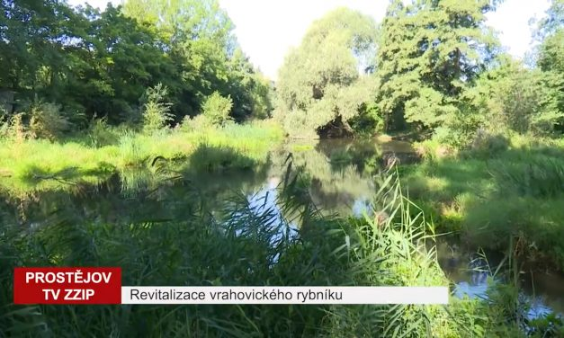 Revitalizace vrahovického rybníka